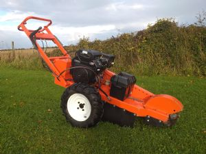 Rayco RG20 Stump Grinder for sale